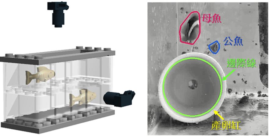 圖1、觀賞魚種魚行為辨識分析設備將攝影機裝設