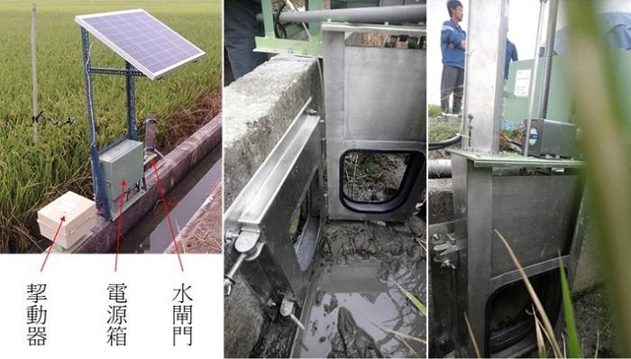 圖3、建置於水田的電動水閘門及控制模組。