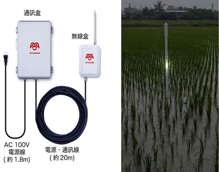 圖2、建置於水田的傳感器外觀及資訊傳輸模組。