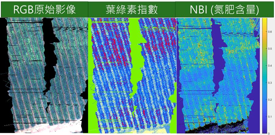 圖2、鳳梨生長狀態光譜監測成果