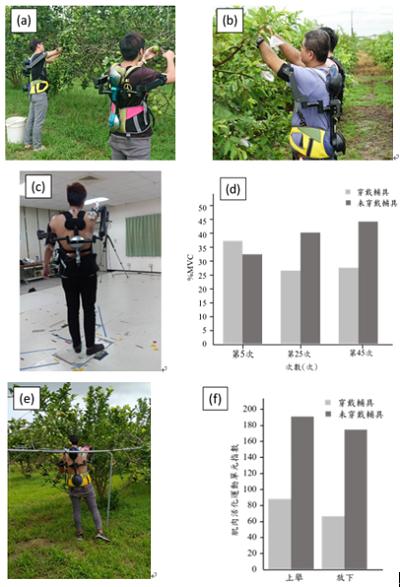 圖3、檸檬園實地採收與量測。圖(a)為檸檬園實地採收測試;圖(b)為芭樂園實地套袋測試;圖(c)為實驗室肌電訊號實驗架設圖;圖(d)為實驗室肌電訊號量測結果;圖(e)為檸檬園肌電訊號實驗架設圖;圖(f)為檸檬園肌電訊號量測結果。