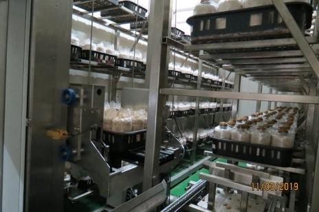 太空包栽培盛盤出/入庫轉位定植基座